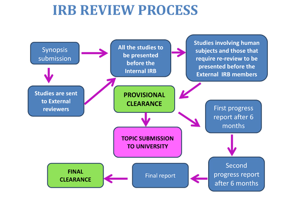 Essay on institutional review board